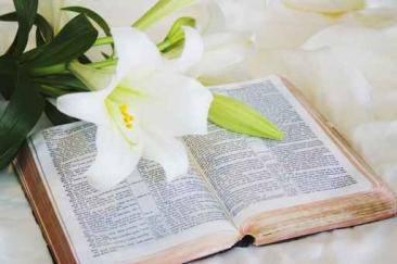 BIBBIA è verità