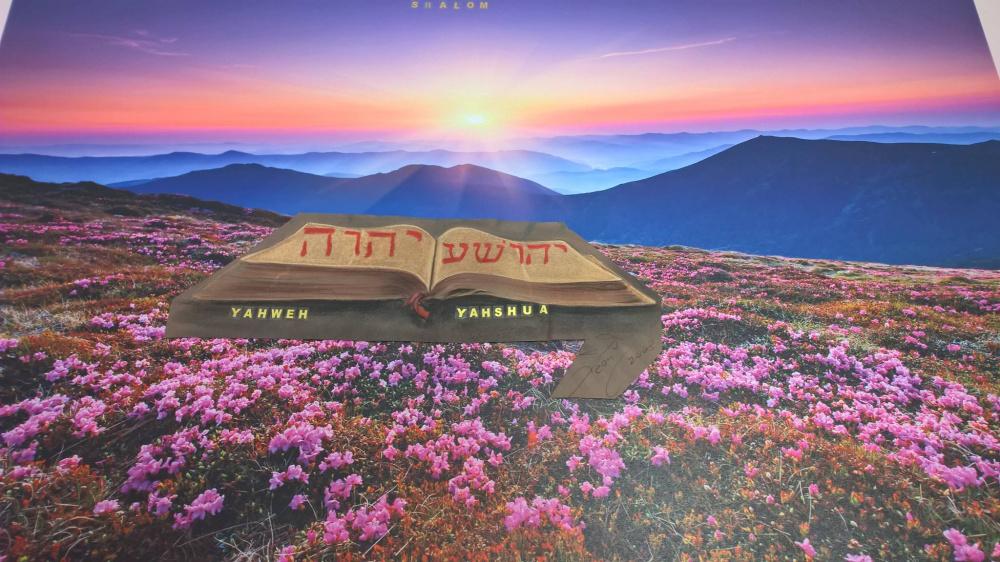 La sola Bibbia ci dirà la verità, gli uomini sono bugiardi