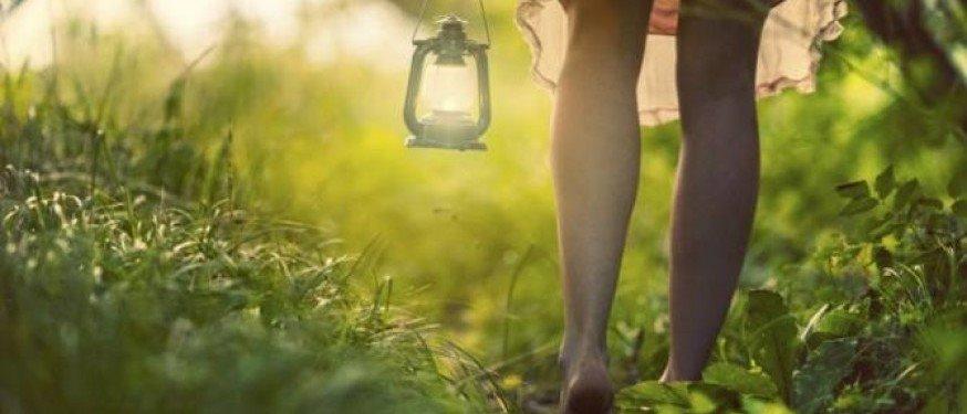 La tua Parola è una luce del cammino della nostra vita